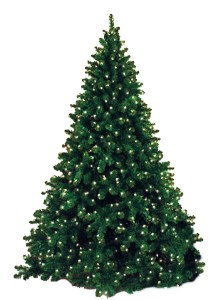 7.5' Natural Pre-Lit Tree with Warm White LED Lights