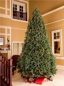 12' Classic Sequoia Tree with Metal Stand