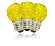 G40 Non-Dimmable Gold Commercial Retrofit Bulb with an E26 Base and 10 Internal LED Chips