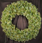 5' Blended Pine Wreath Pre-Lit with Pure White LEDS