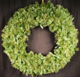 6' Blended Pine Wreath