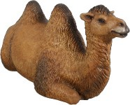 Life Size Camel Lying Down