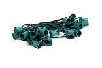 C9 100' Cordset E17 Sockets on Green Wire with 12